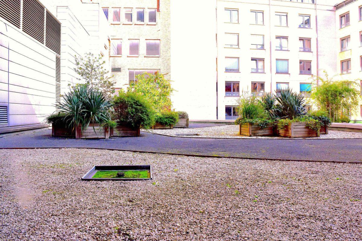 Terrasse jardin botanique amiens maison design for Appartement bordeaux jardin botanique