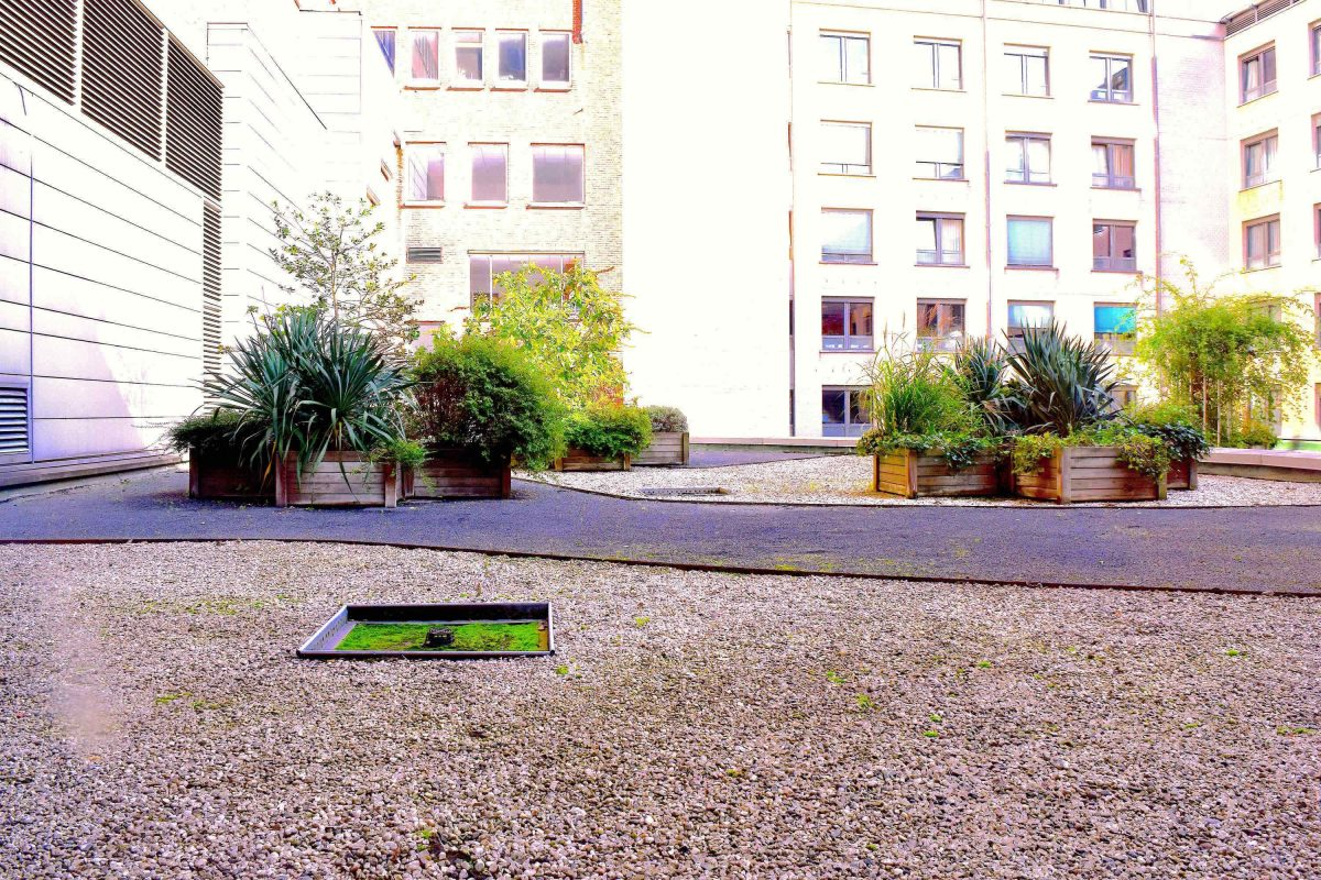 Terrasse et jardin immobilier bruxelles 1611 - Jardin suspendu brussels montpellier ...