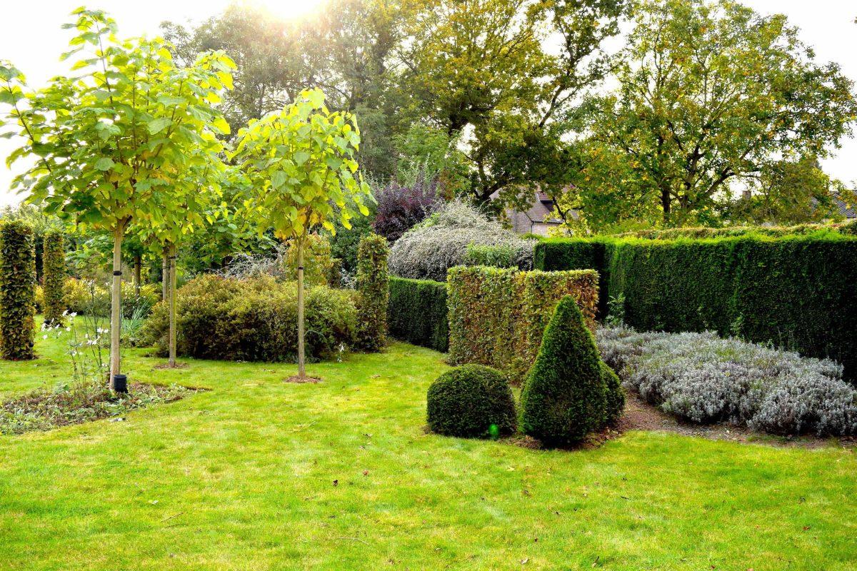 devallee-nathalie-architecte-paysagiste-jardin-creation-entretien-travaux-EVK2