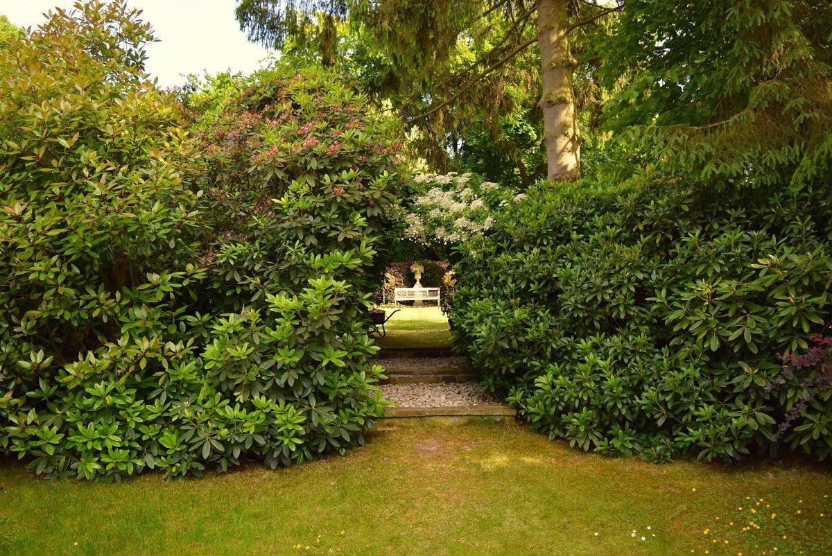 Devall e nathalie architecte paysagiste bruxelles for Jardin mai 2015