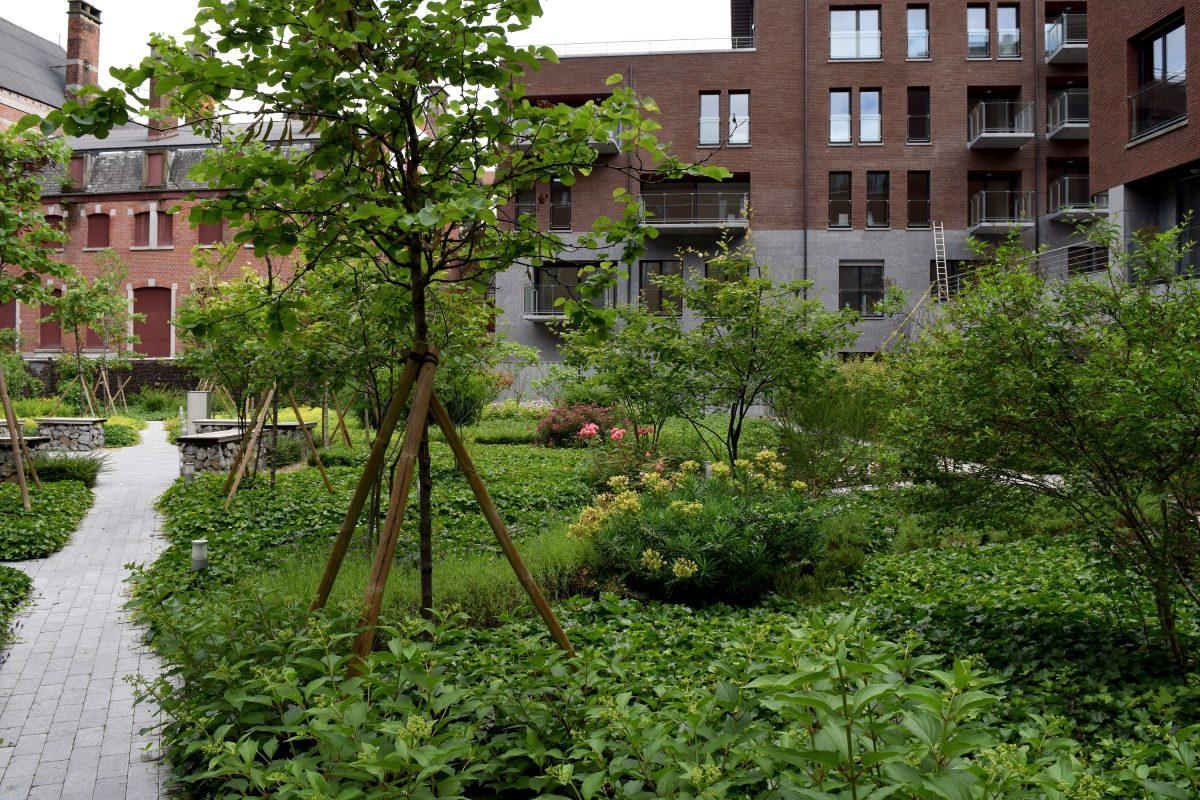devallee-nathalie-architecte-paysagiste-jardin-creation-entretien-travaux-Pass013