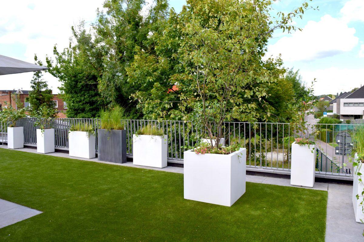 architecte de jardin paysagiste jardin mditerranen