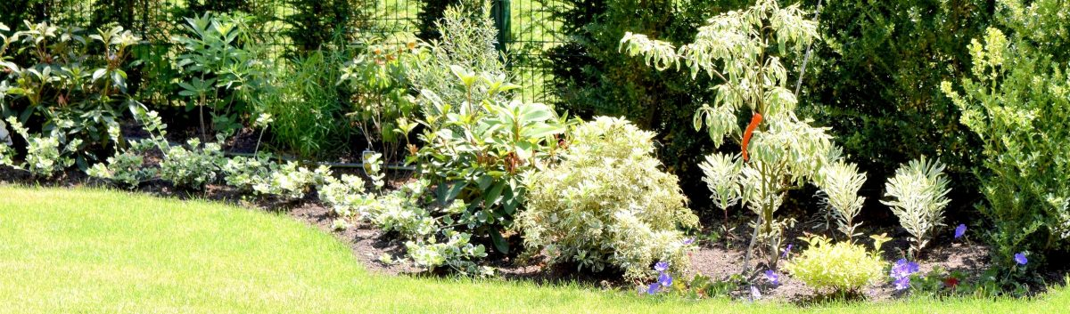 Nathalie-Devallée-jardins-SCC6-e1497620932574